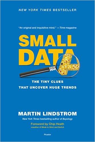 Martin Lindstrom Small Data marketing book report POSMarketing